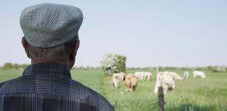 Quelle réforme pour les retraites agricoles ?