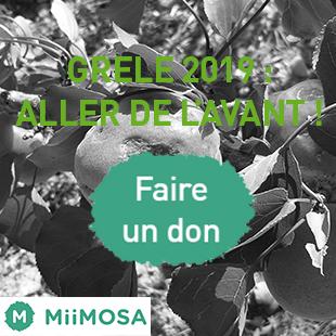 Grêle 2019 : faîtes un don pour les agriculteurs ardéchois !