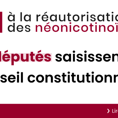 Réintroduction des néonicotinoïdes et filière de la betterave : recours et plan B !