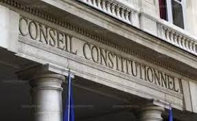 Sécurité globale : recours devant le Conseil constitutionnel